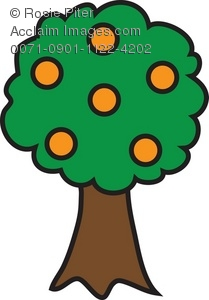 209x300 Clip Art Illustration Of An Orange Tree