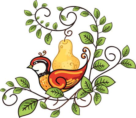 445x385 Partridge In A Pear Tree Clip Art