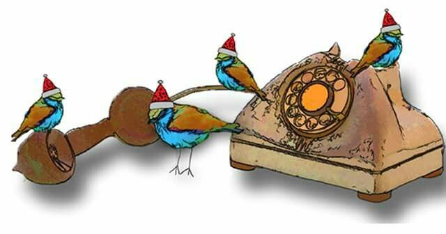640x336 16 Best 12 Days Of Christmas 4 Calling Birds Images