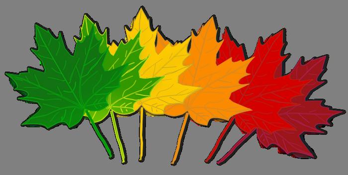 700x352 Clip Art Fall Colors Clipart