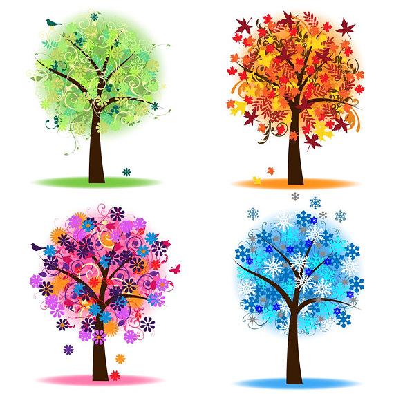 570x570 Four Seasons Trees Clipart Clip Art Spring Summer Winter Fall