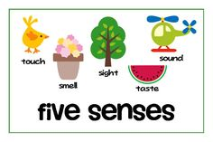 236x157 Image Result For My Five Senses Clipart Curriculum'S