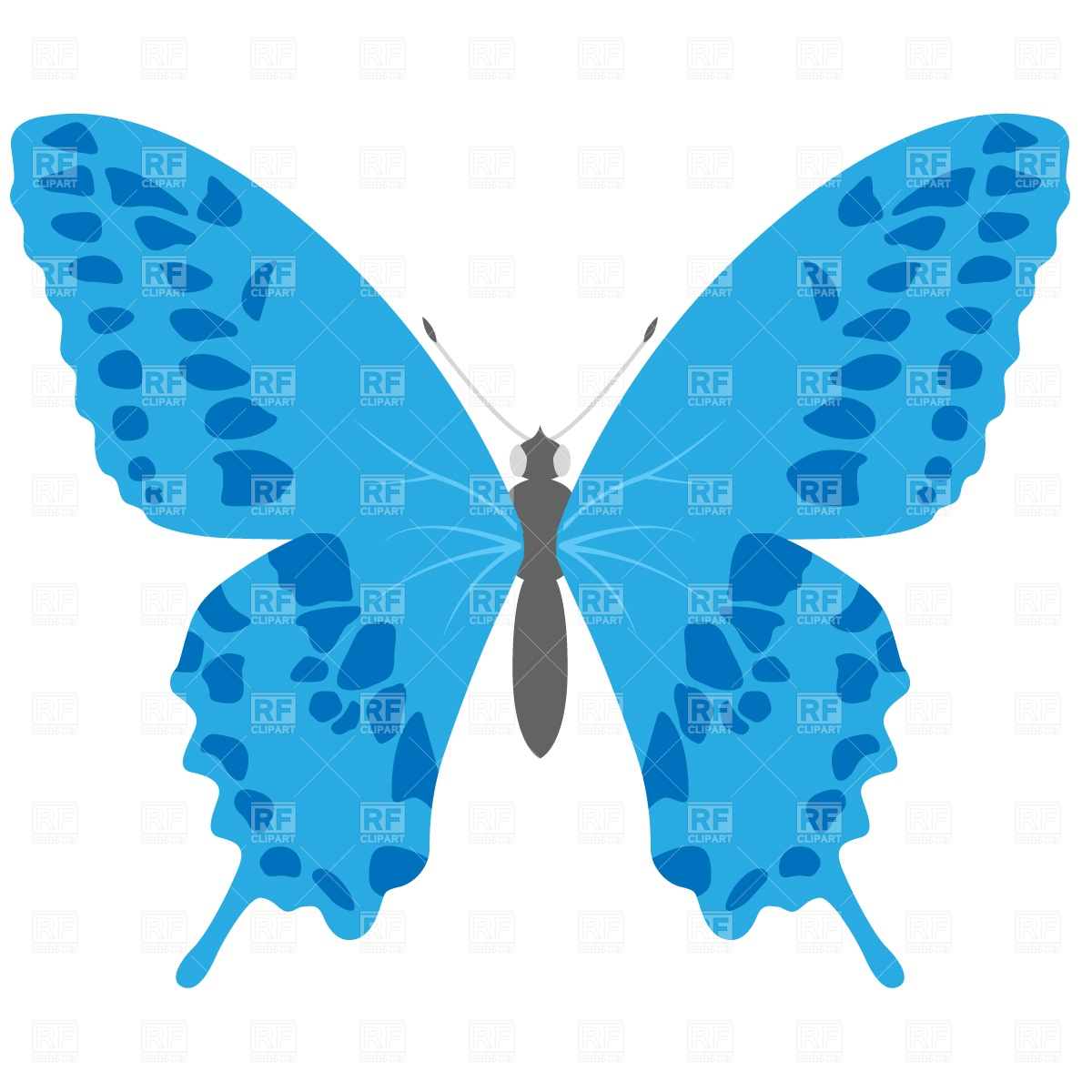 1200x1200 Swallowtail Butterfly Royalty Free Vector Clip Art Image