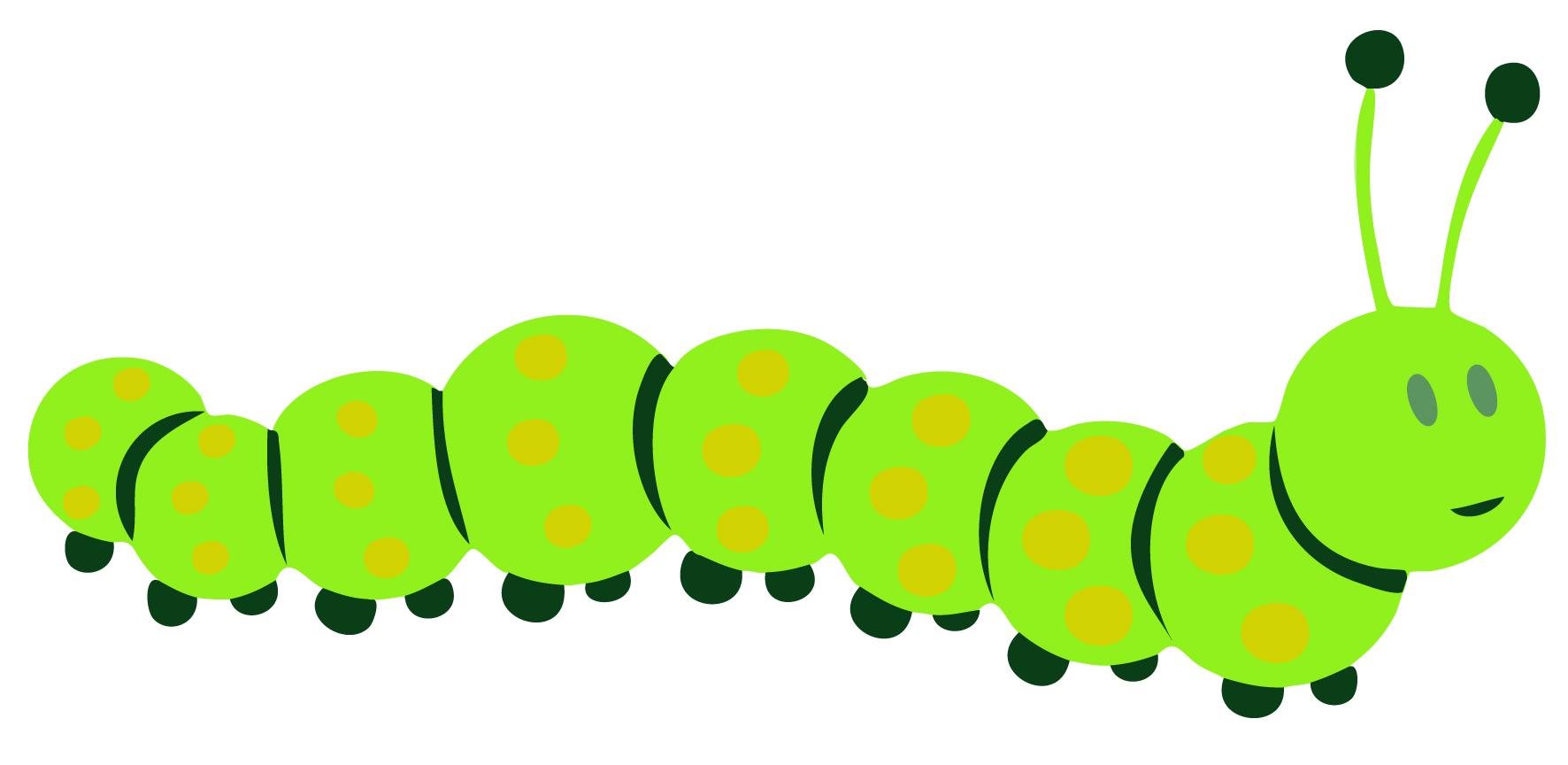 1772x864 Caterpillar Bug Clipart, Explore Pictures