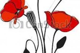 343x228 Poppy Flower Pictures Clip Art