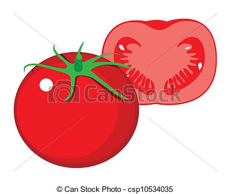 450x380 The Abstract Of Tomato Vector Vectors