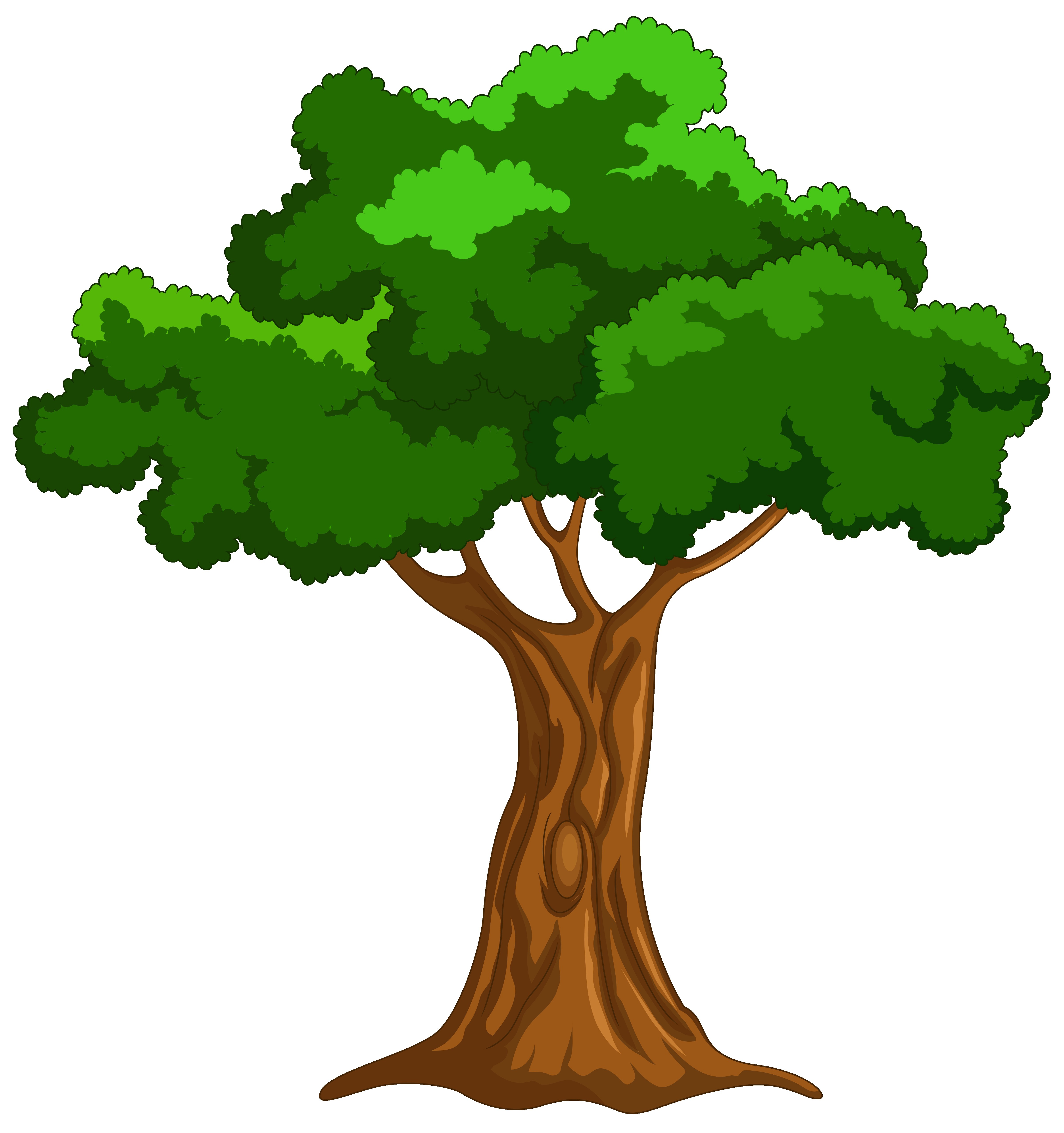 4810x5122 Exotic Tree Png Clip Art Best Web Clipart And Png