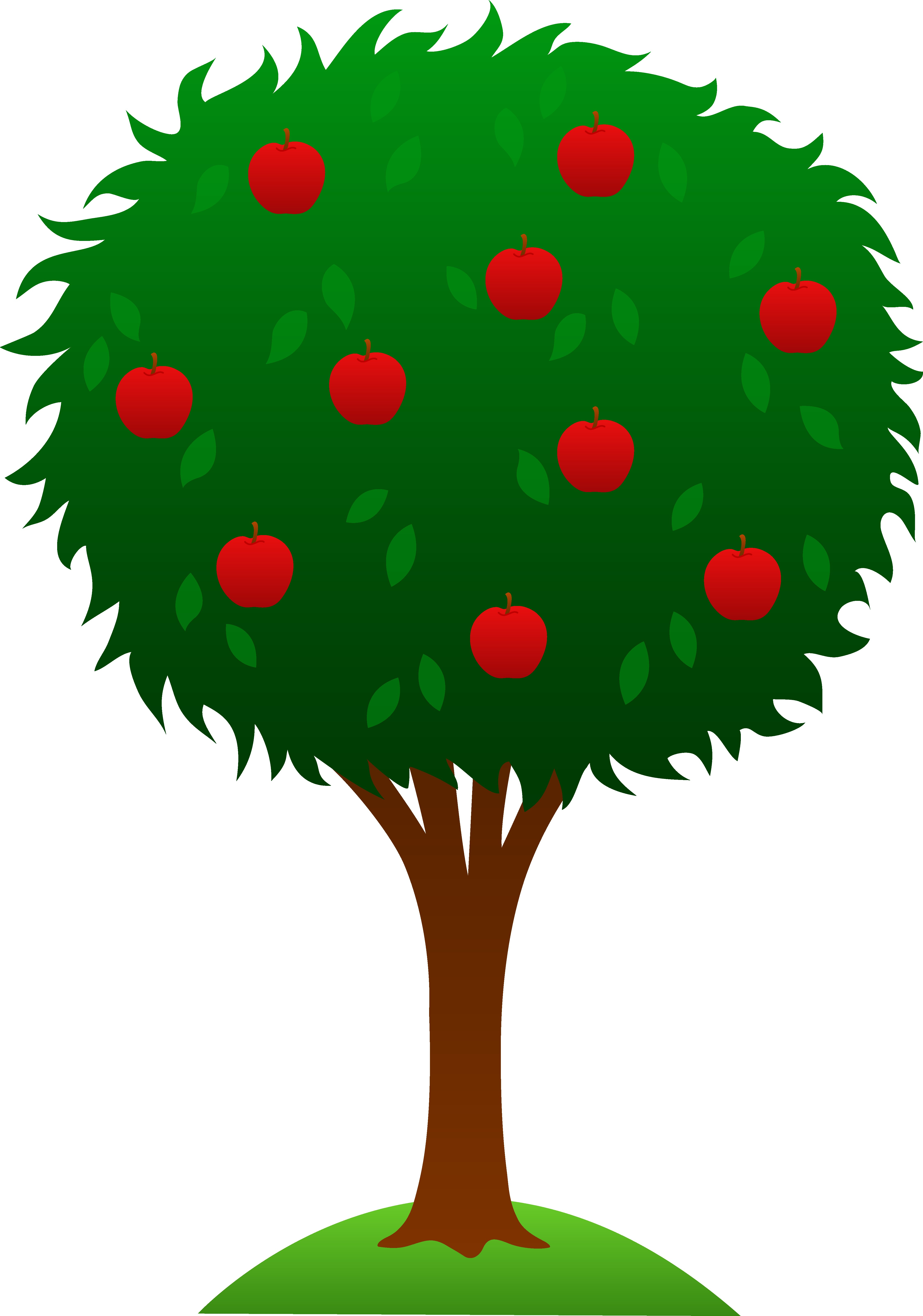 4504x6424 Tree Png Clip Art Best Web Clipart In Of Trees