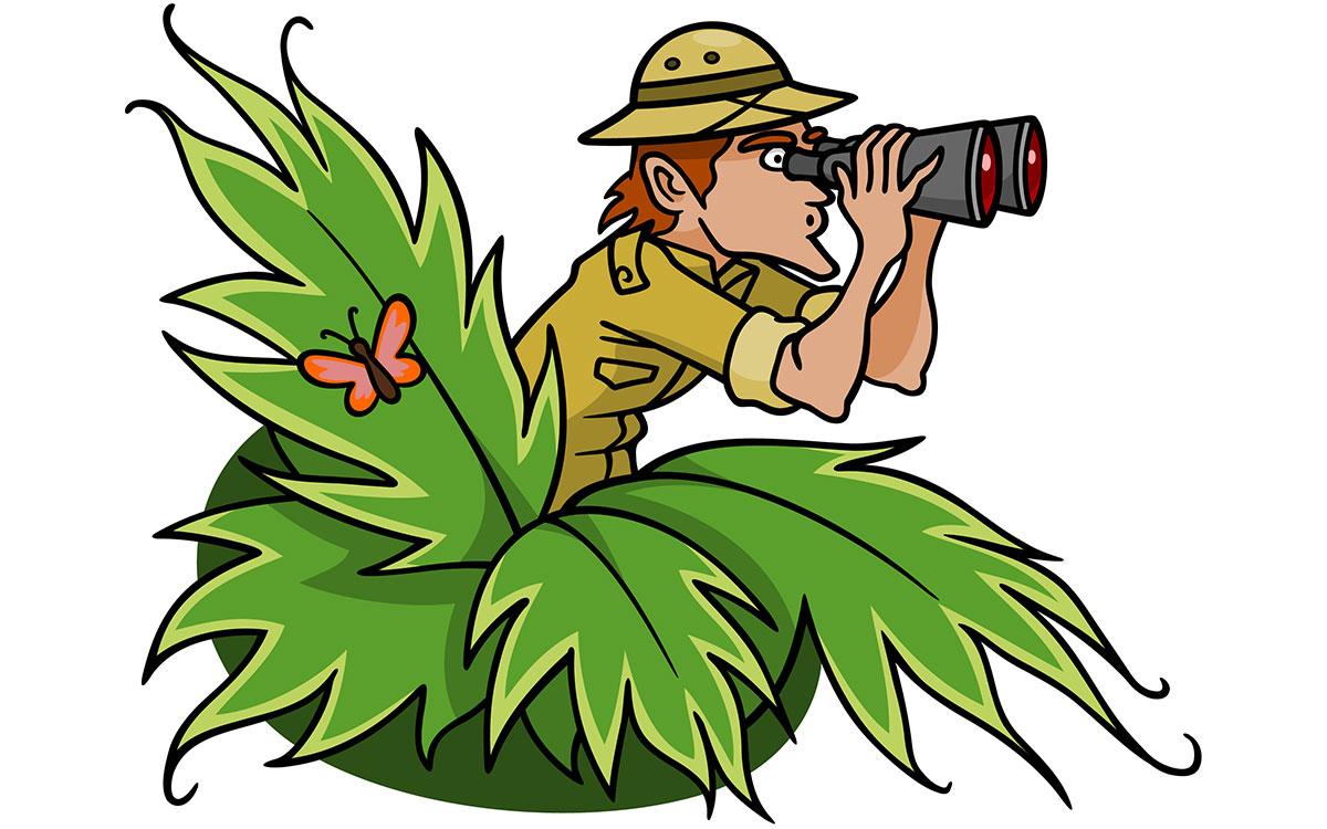 1200x750 Jungle Clipart Adventurer