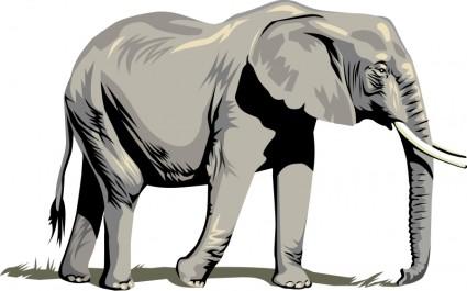 425x265 Elephant Vector Clip Art Clipart Panda