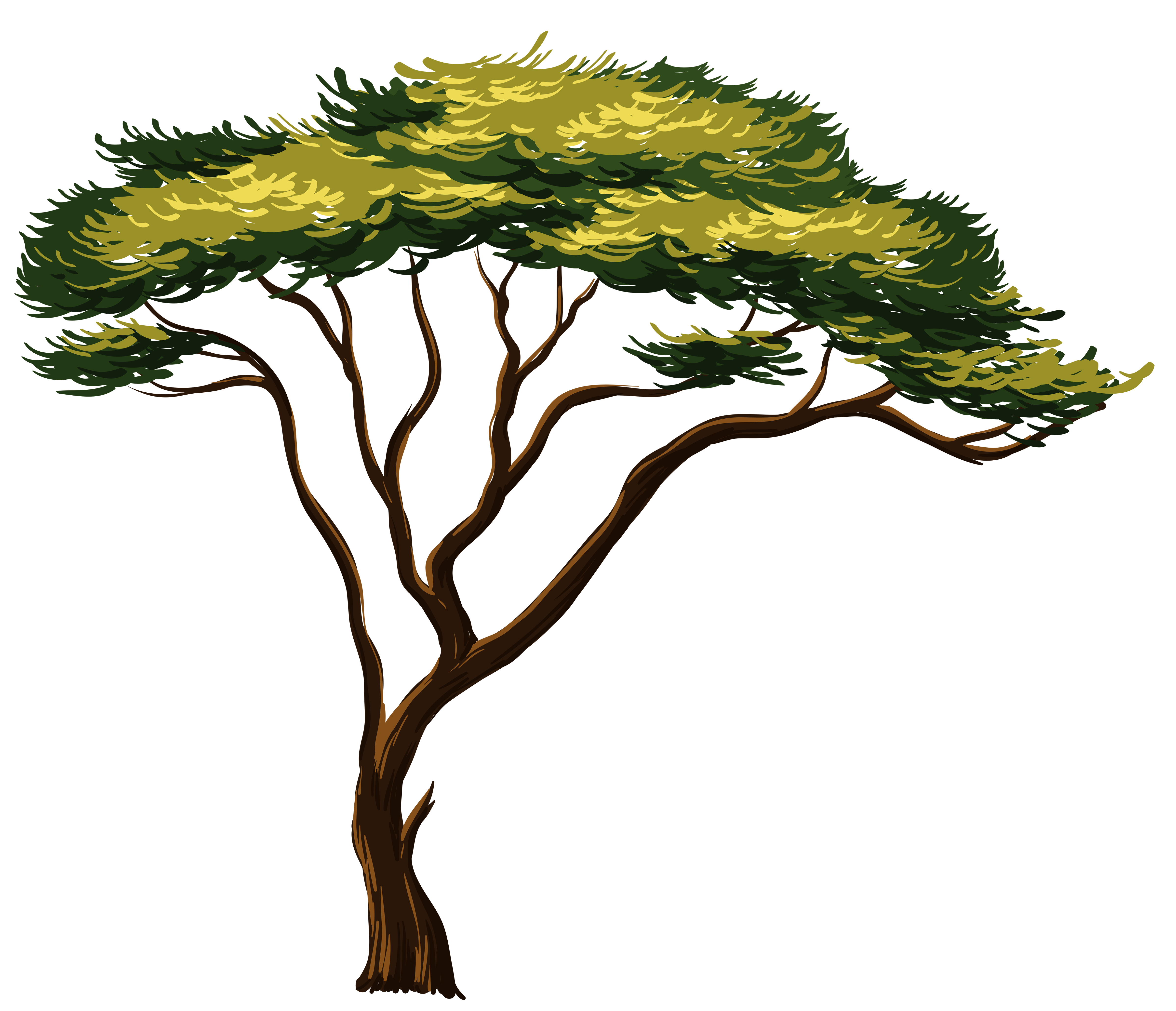 4792x4120 Painted African Tree Png Clipart Pictureu200b Gallery Yopriceville