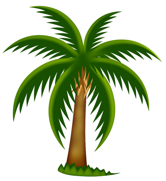 538x587 Palm Tree Art Tropical Palm Trees Clip Art Go Back Images For 3