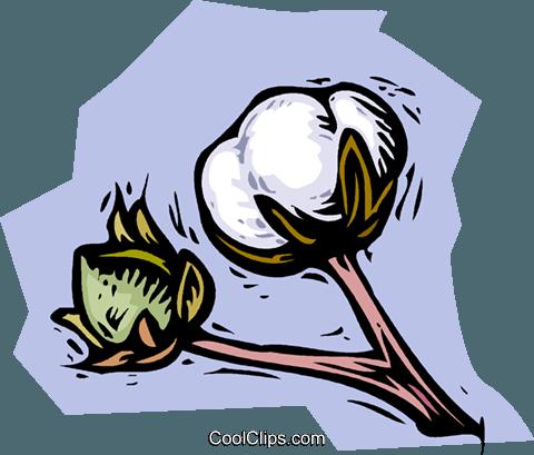 480x409 Cotton Plant Royalty Free Vector Clip Art Illustration Vc001508