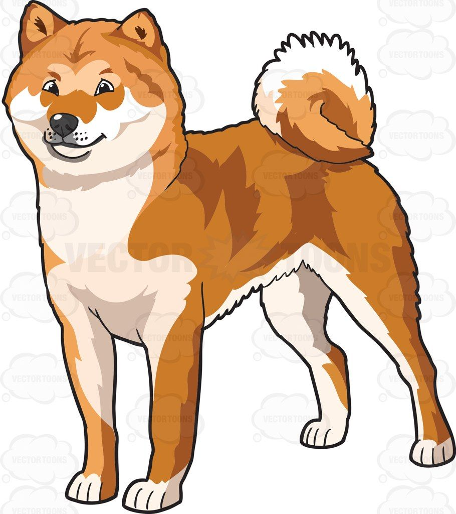 910x1024 Collection Of Akita Dog Clipart High Quality, Free Cliparts