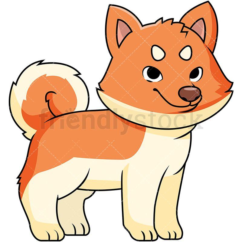 800x800 Cute Akita Puppy Cartoon Vector Clipart Akita