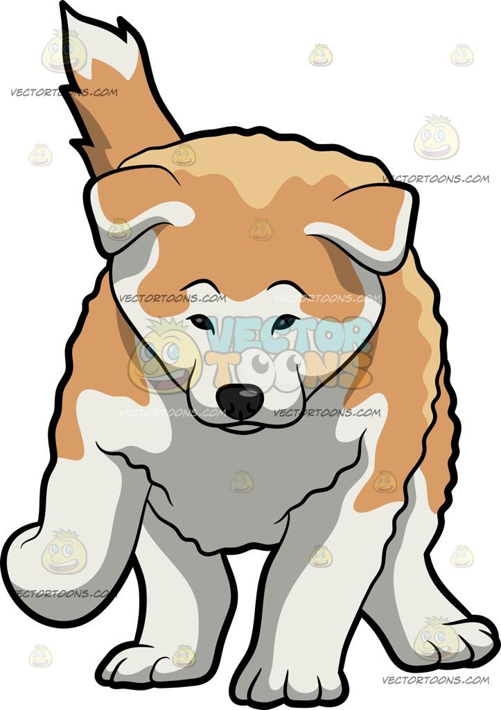 723x1024 A Cute Akita Dog Cartoon Clipart Vector Toons