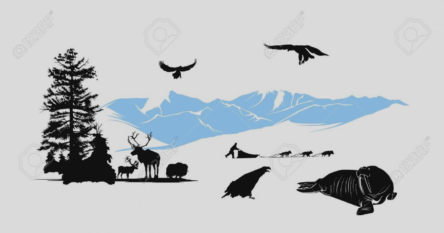 1792x940 Amazing Alaska Clip Art Clipart Panda Free Images