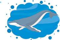 200x134 Search Results For Whale
