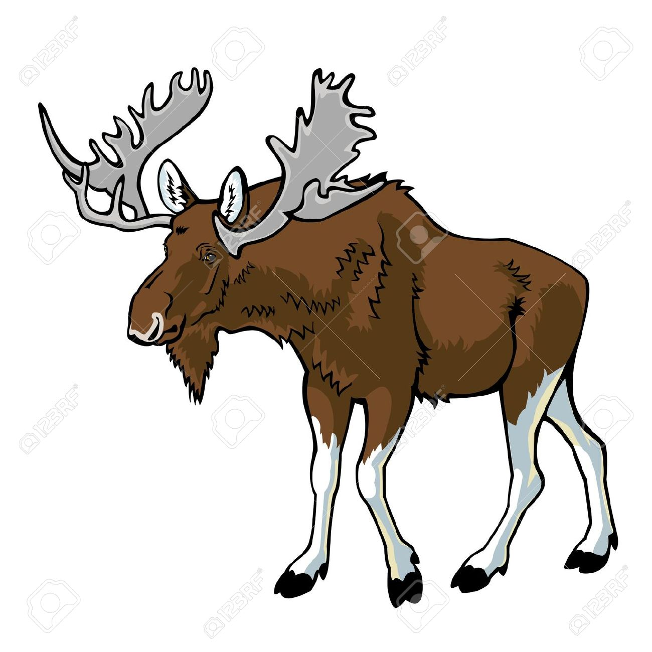 1300x1300 Moose Clipart Alaska Free Collection Download And Share Moose
