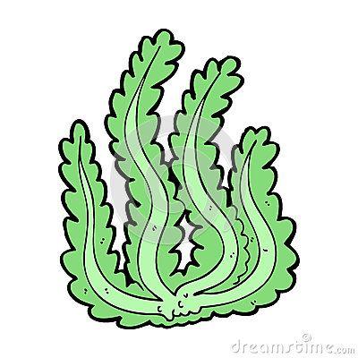 400x400 Algae Cartoon Cliparts Free Download Clip Art