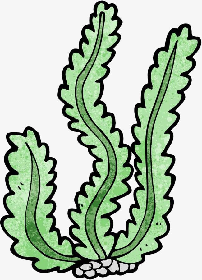 650x901 Hand Painted Green Algae, Ocean, Seaweed, Algae Png Image