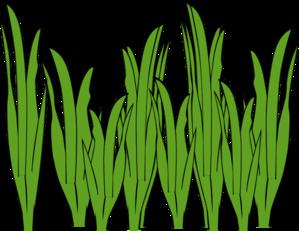 299x231 Seaweed Mega Hoop Design Nobbieneezkids Clip Art