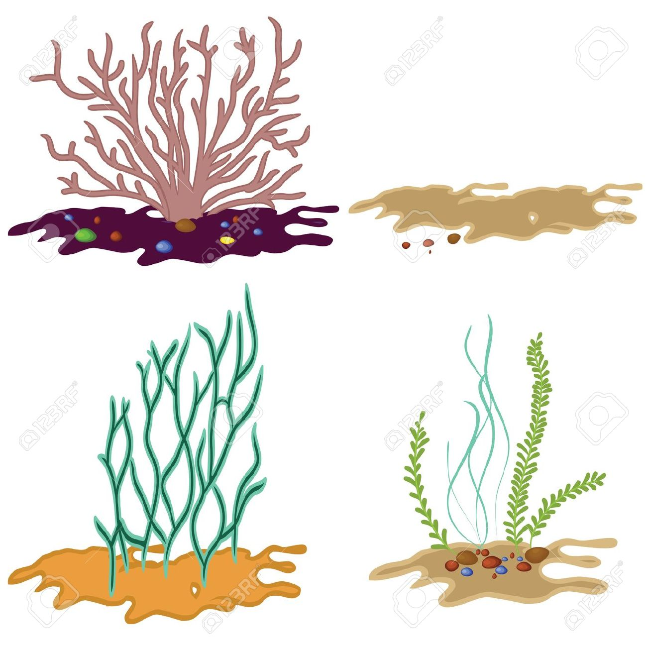 1300x1300 Stone With Plant Clipart