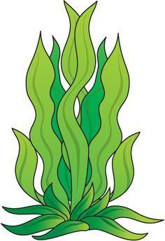 236x344 Cartoon Algae