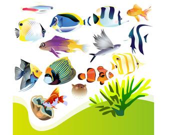 340x270 Aquarium Clip Art Etsy
