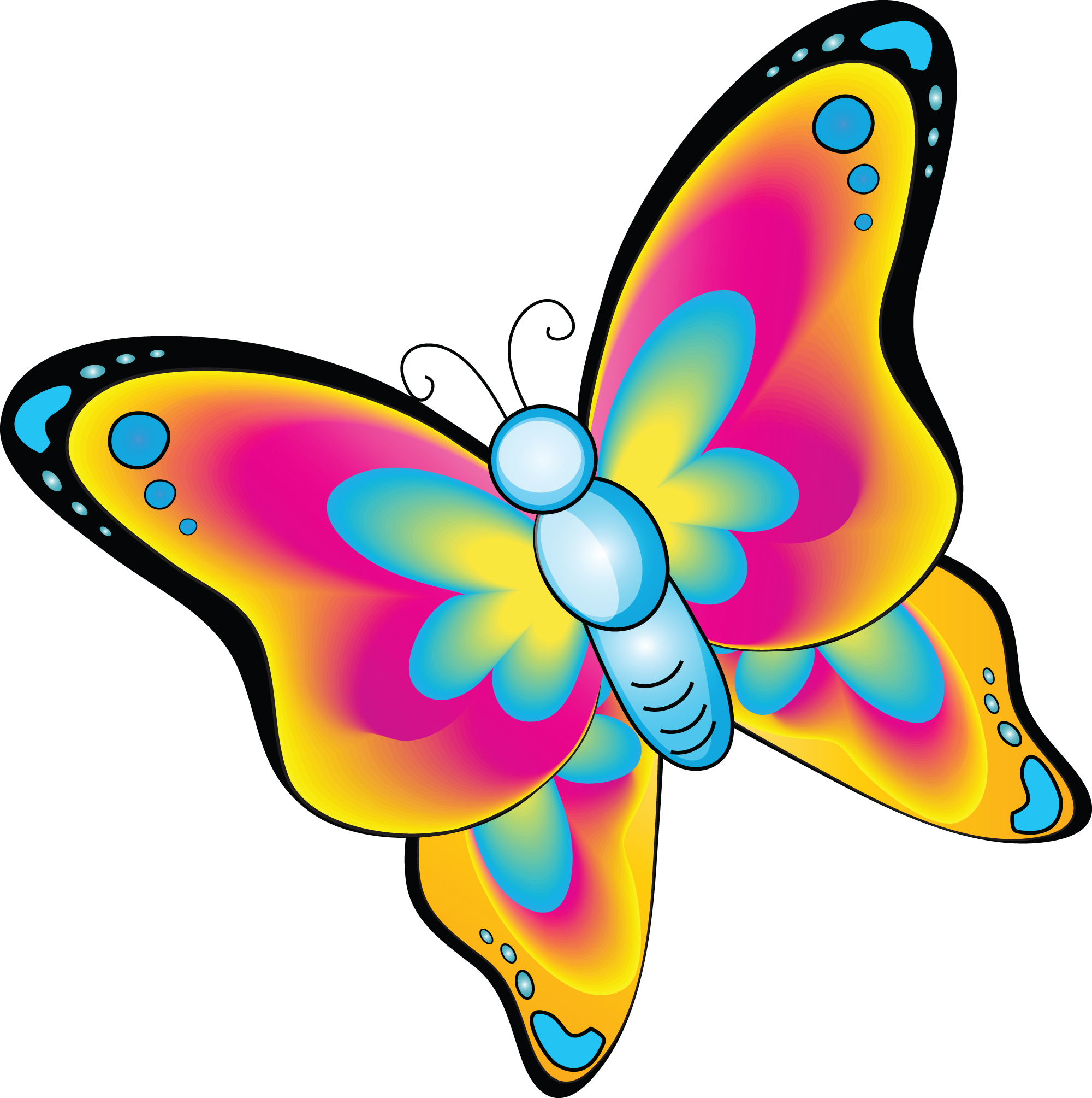 2000x2009 Cartoon Butterfly Cliparts Free Download Clip Art