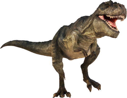500x386 T Rex Dinosaurs History Dinosaurs Pictures And Facts 1
