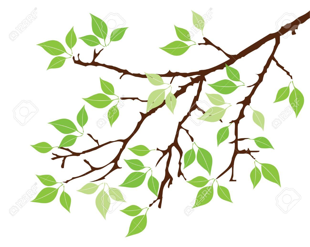 1300x1036 Tree Branch Clip Art Free Olive Tree Clipart Clip Art Tree