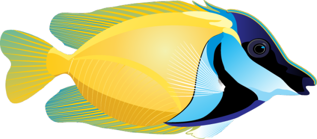639x281 Graphic Design Tropical Fish, Clip Art And Folk Art