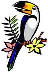 166x248 Lovely Ideas Rainforest Clipart Royalty Free Amazon Clip Art