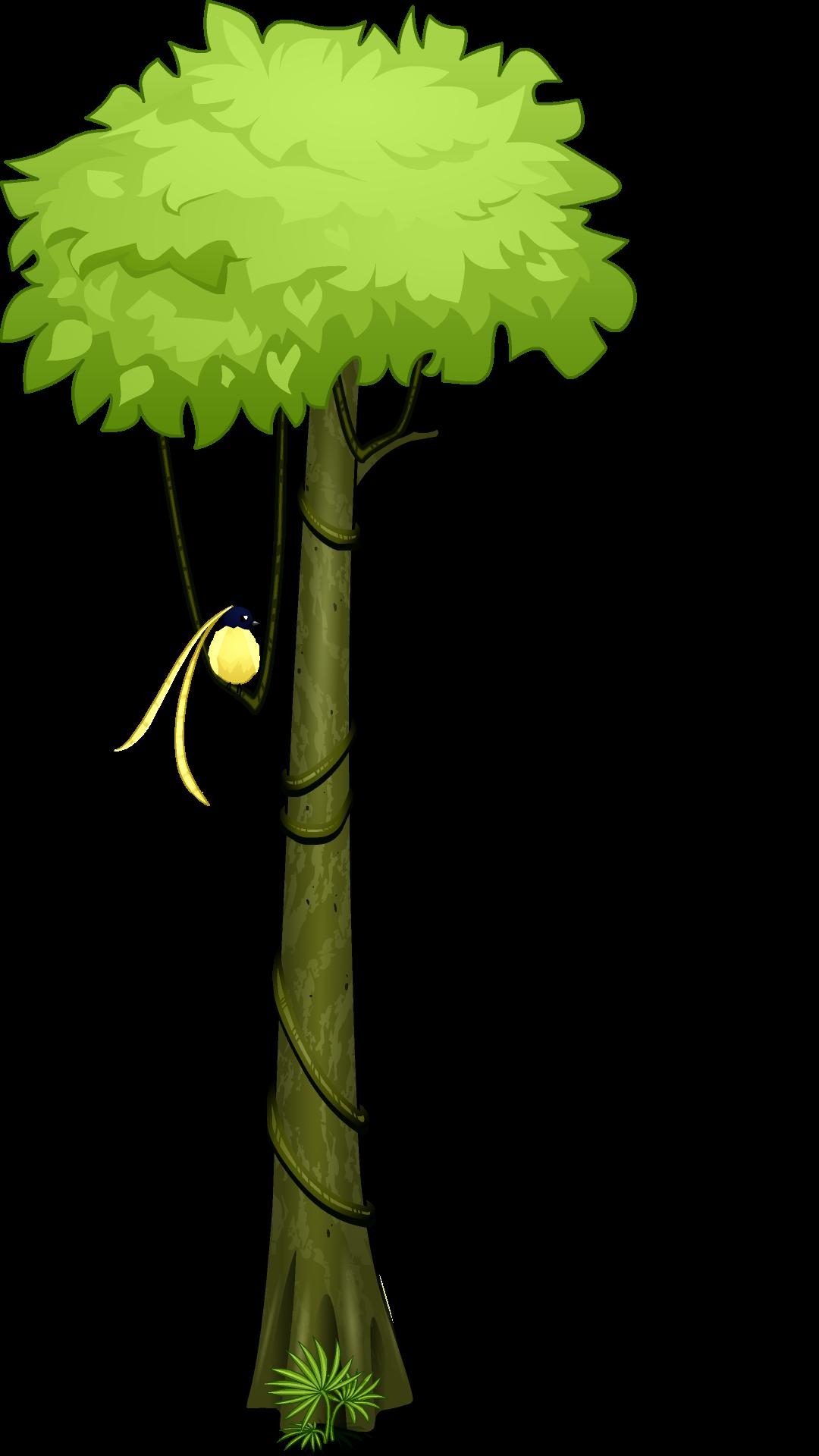 1080x1920 Amazon Rainforest Tropical Rainforest Tree Clip Art