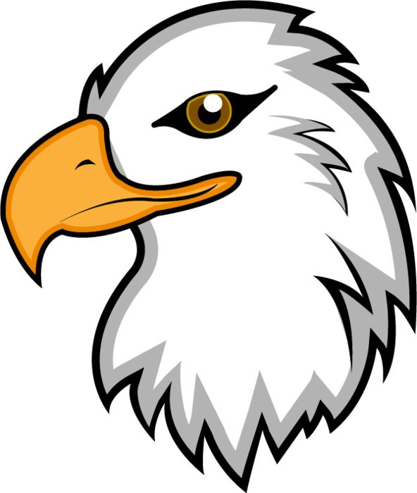 American Bald Eagle Clipart