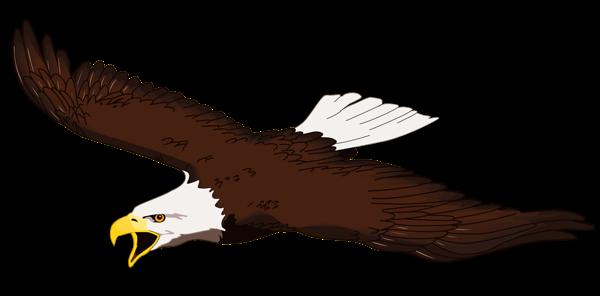 600x296 Free Bald Eagle Clip Art Pictures
