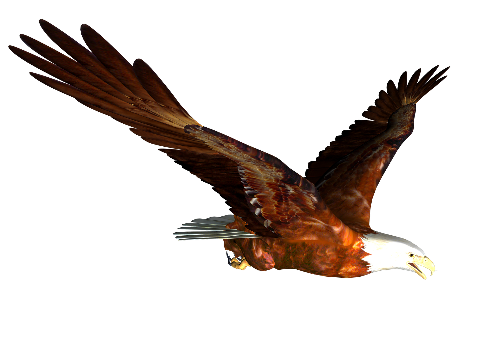1600x1131 Free Eagle Clip Art Pictures