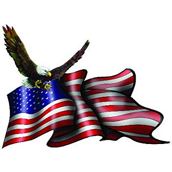 350x350 American Flag Soaring Eagle Decal 5 Inch Free Shipping