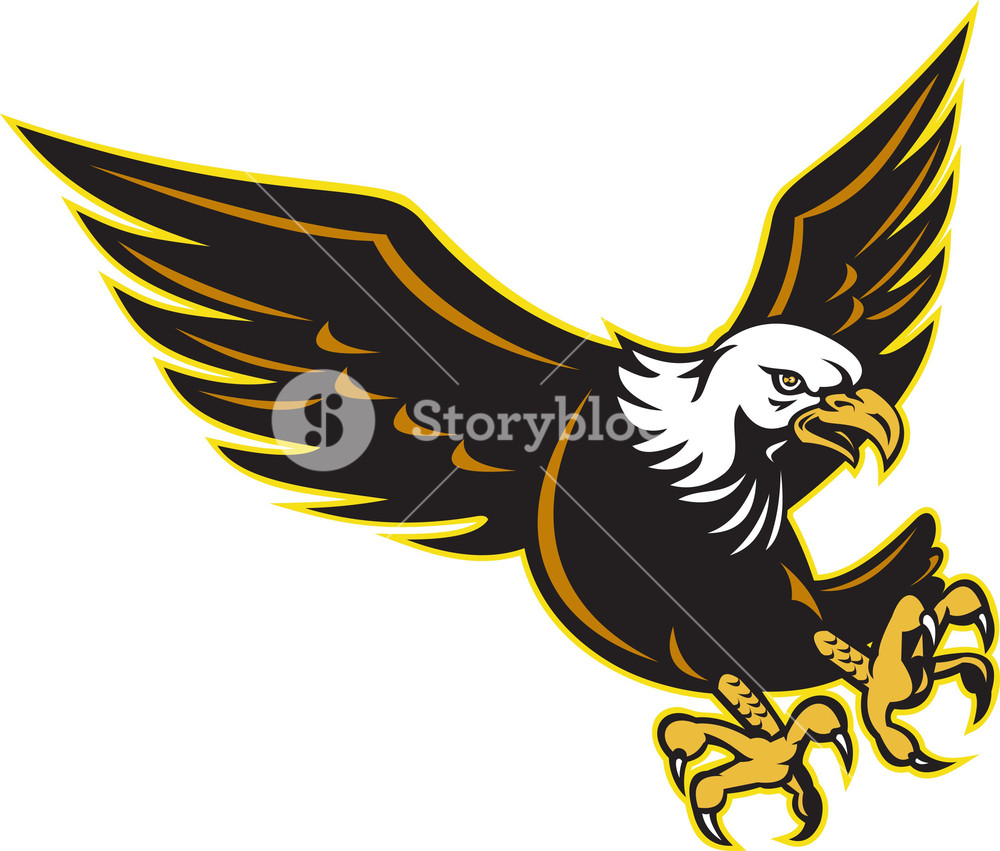 1000x851 American Bald Eagle Flying Royalty Free Stock Image