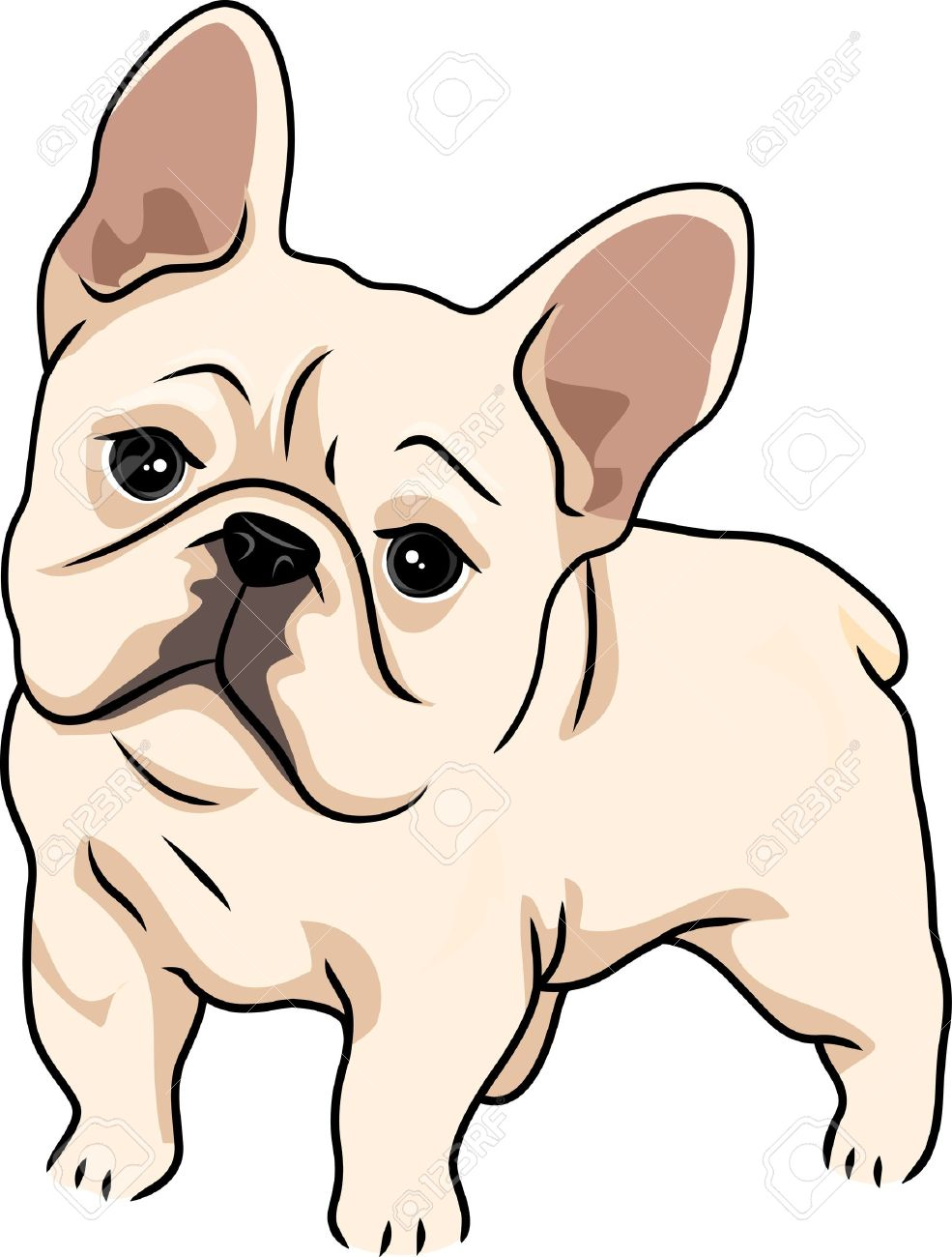985x1300 Wondrous French Bulldog Clipart Head Clip Art Vector Search