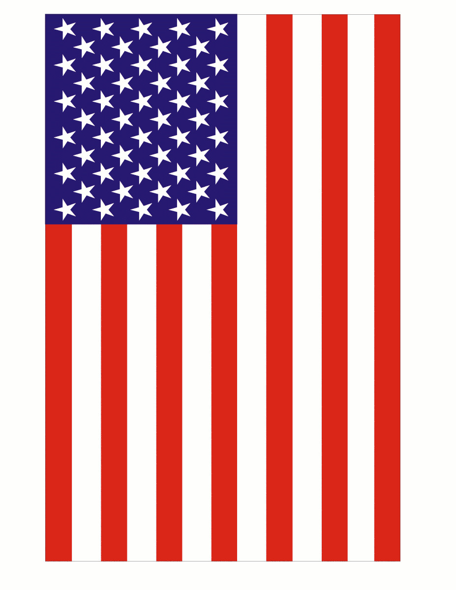 picture regarding Usa Flag Printable named American Flag Clipart Cost-free at  Free of charge for