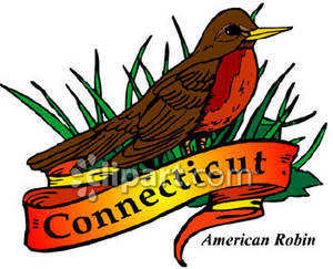 300x243 State Bird Of Connecticut, The American Robin Royalty Free Clipart