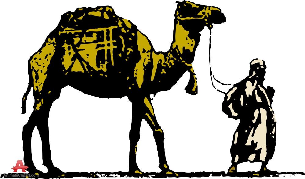 999x588 Camel Images Clip Art Clipart Collection