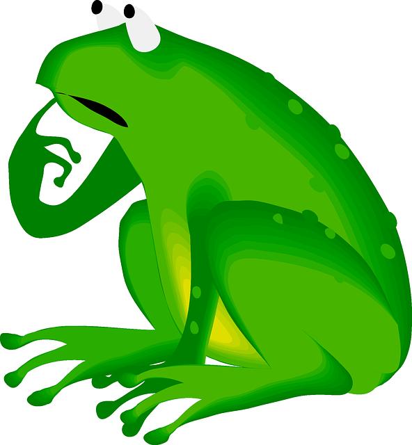 592x640 Frog, Green, Animal, Amphibian, Thinking, Worrying When I Am