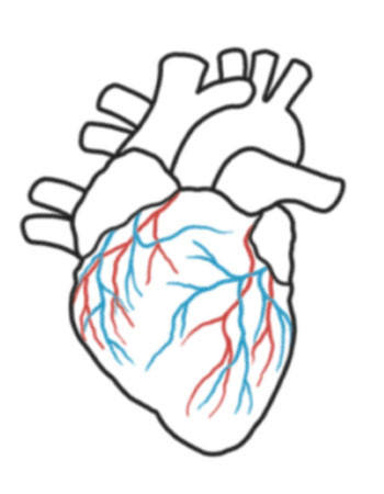 350x450 Collection Of Easy Real Heart Drawing High Quality, Free