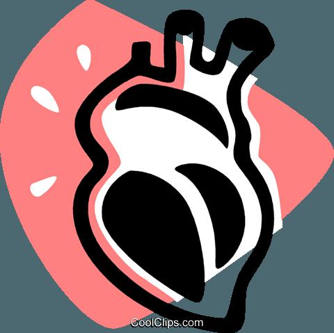 480x479 Human Heart Royalty Free Vector Clip Art Illustration Vc075918