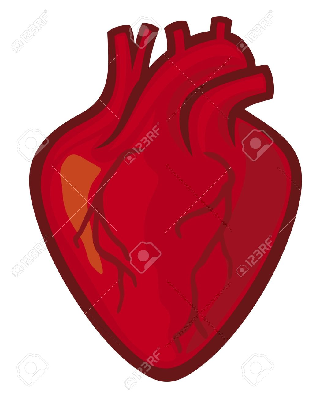 1082x1300 Rate Clipart Human Heart