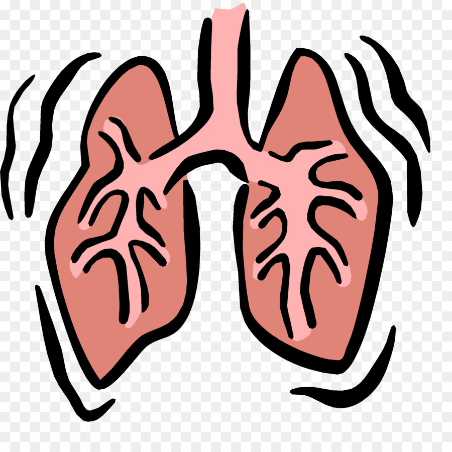 900x900 Respiratory System Images Clip Art Respiratory System Respiratory