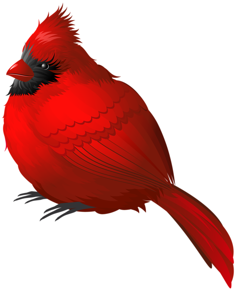 487x600 Red Winter Bird Png Clipart Image Cardinals